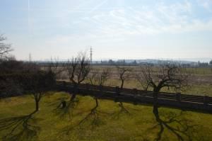 Praha realityProdej pozemku