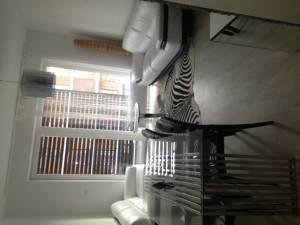 Byty k pronájmuPrenajmem 3 izbovy krasne zariadeny byt v Slencniciach