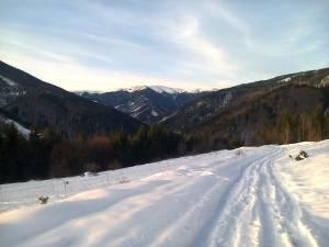 Nemovitosti na prodej: Pozemok v prekrásnej prírode Nízkych Tatier
