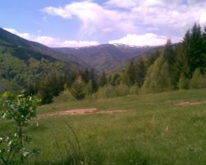 Pozemok v prekrásnej prírode Nízkych Tatier