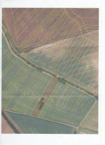 Prodej zemědělských pozemků v Polešovicích orná půda 3878 m2 obhospodařované a parcely v kú Ořechov