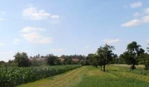 Brno PozemkyProdej zahrady - rezerva na bydlení